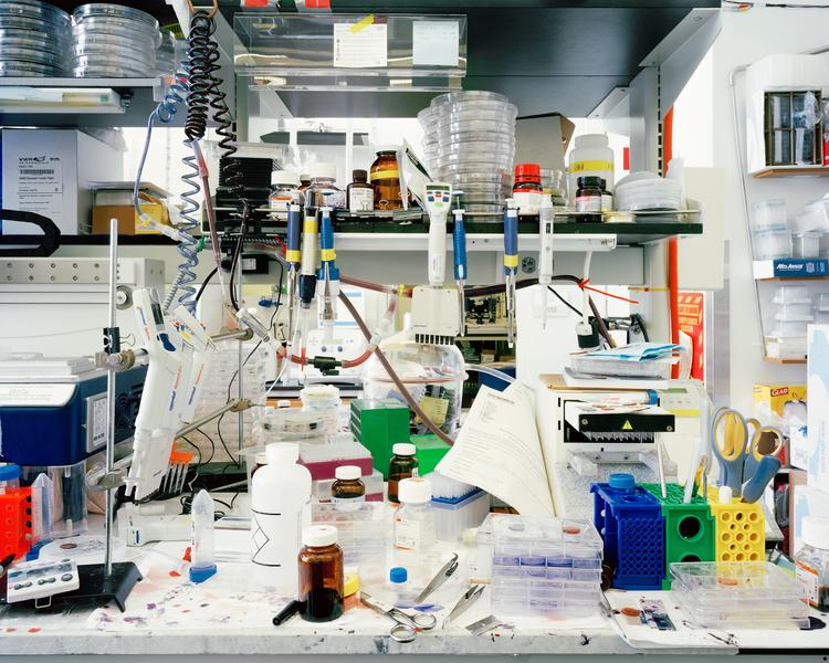 laboratories_zhangbolong-liu