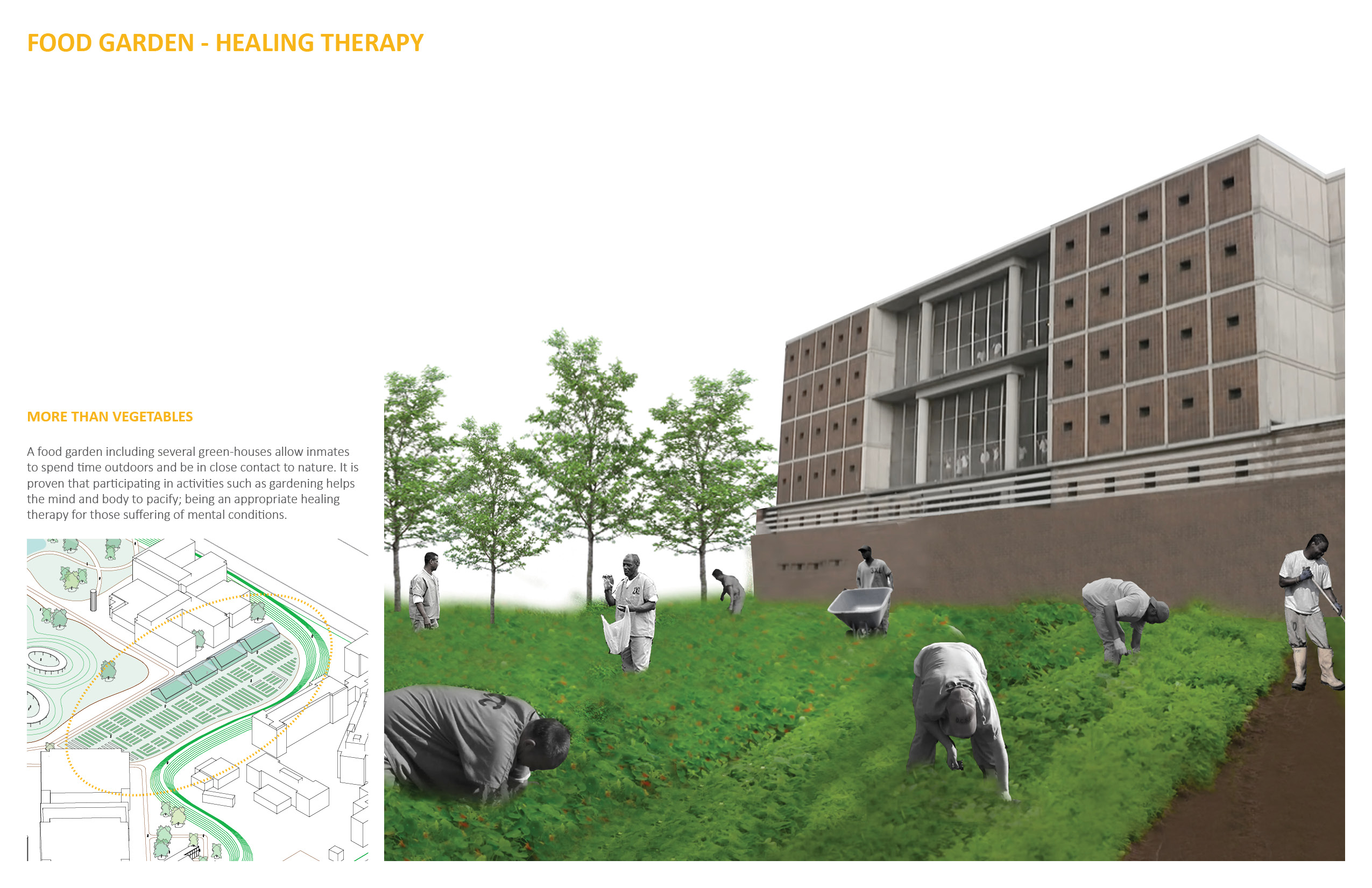 Alba Quezada - Campus Proposal - Food Garden